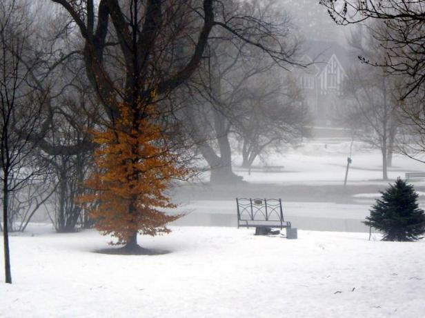 Stratford in winter, from ontariopics.com