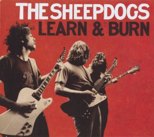 SHEEPDOGS_0002
