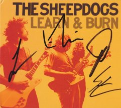 SHEEPDOGS_0006