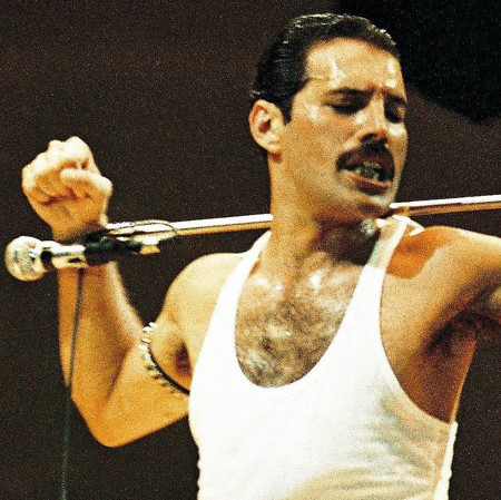 WTF Search Terms:  Freddie Mercury's Mic Standedition