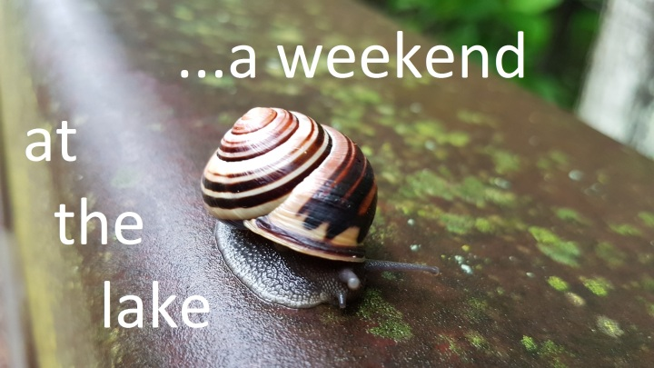 #572: VIDEO – A Weekend at theLake