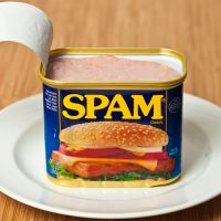 #897:  Spam